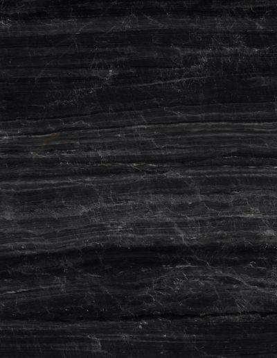 Litex, Black Venato